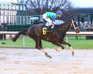 Uncontested winning the 2017 Smarty Jones Stakes at Oaklawn. Photo: Coady Photography
