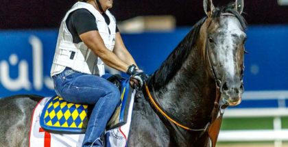 Arrogate and Dana Barnes in Dubai. 3/24/17. Photo: Jesse Caris