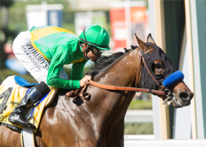 Cheyenne Stables' Mastery wins the 2017 San Felipe Stakes (GII) at Santa Anita before being pulled up and eventually diagnosed with a left front condylar fracture, ending his Kentucky Derby dreams. Photo: Benoit