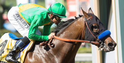 Mastery Wins San Felipe Derby Dreams Dashed With Condylar Fracture March 11 2017 Margaret Ransom