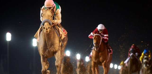 Arrogate Becomes World's Richest Racehorse With Dubai Win