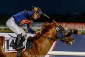 Mind Your Biscuits and Joel Rosario win the Dubai Golden Shaheen Sponsored By Gulf News. Photo: Jesse Caris