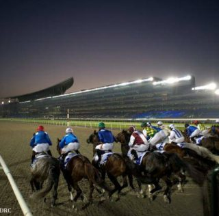 Master Plan Takes on the World in UAE Derby