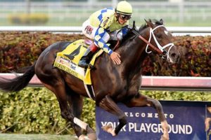Always Dreaming Wins the 2017 Florida Derby with John Velazquez aboard. Photo: Coglianese