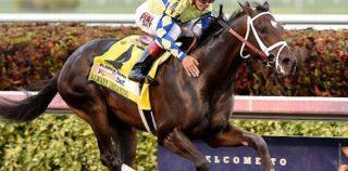 Bodemeister Colt Was 'Always' Special