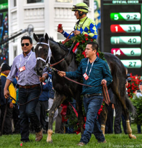 Always Dreaming heads to the winner's circle at Churchill Downs after winning the 143rd Kentucky Derby, 5/6/17. Photo: Jordan Sigmon