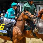 Roca Rojo, winner of the 2017 Athenia Stakes at Churchill Downs. Photo: Jordan Sigmon