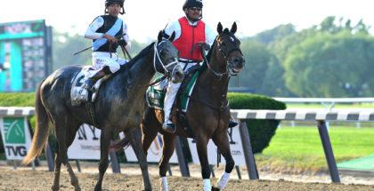 Tapwrit after winning the 2017 Belmont Stakes, 6/10/17. Photo: Daniella Ricci