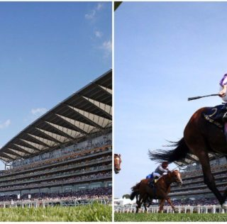 Highland Reel Proves Best in Prince of Wales's at Royal Ascot