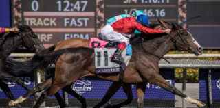 Breeders' Cup Champs Take Spotlight in Prince of Wales's Stakes at Royal Ascot