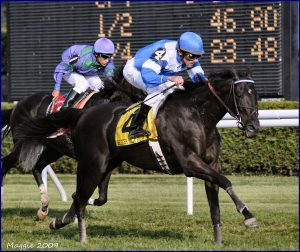 Better Talk Now winning the 2004 Sword Dancer Invitational Handicap at Saratoga. Photo: Herringswell Stables