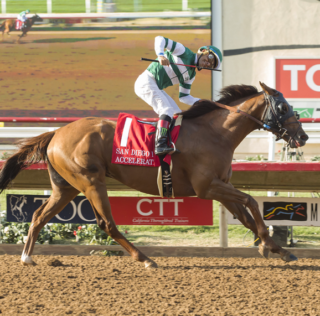 Accelerate Favored To Repeat In San Diego