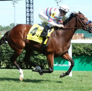 Dona Bruja One To Beat In Beverly D