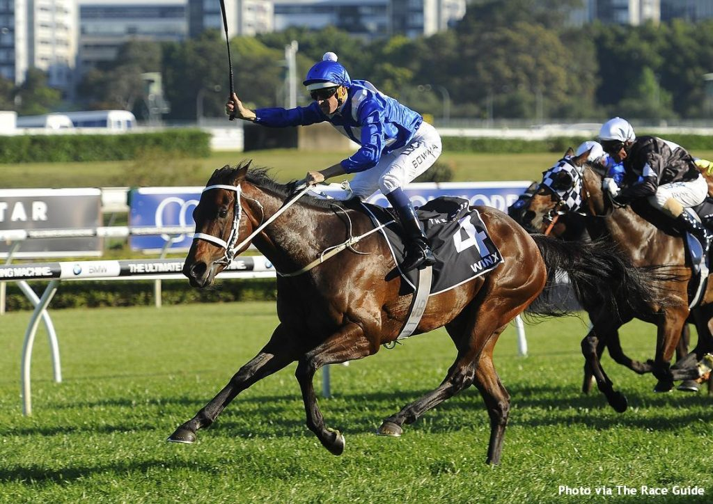 Aussie Star Winx Exposes Racetrack Myth Lady And The Track