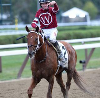 Gun Runner Keeps Rolling With Woodward Win