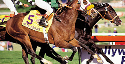 For Sherman, 'Chrome' Now a Part of His Heart - Lady and The