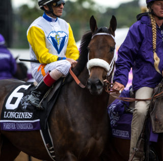 Breeders' Cup Friday Photo Gallery – 11/3/17