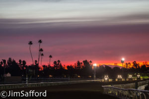 It S All About Breeders Cup Qualifying At Santa Anita