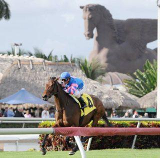 Pegasus World Cup Down To Ten As Omaha Beach, Spun To Run Will Scratch