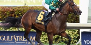 Is Mask A Contender Or Pretender On Kentucky Derby Trail