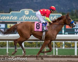 Santa Anita Derby A West Coast Showdown Between Veteran
