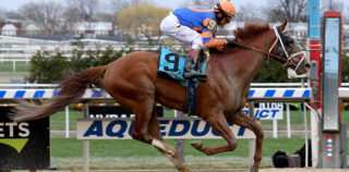 Vino Rosso Toasts To Kentucky Derby Qualifying With Wood Memorial Win