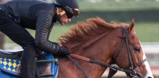 Gomez 'Touching The Sky' With Justify