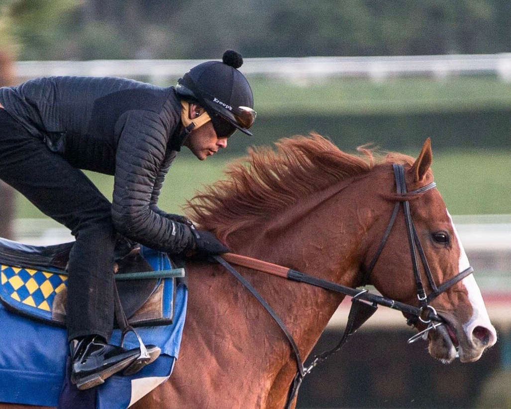 Gomez 'Touching The Sky' With Justify - Lady and The Track