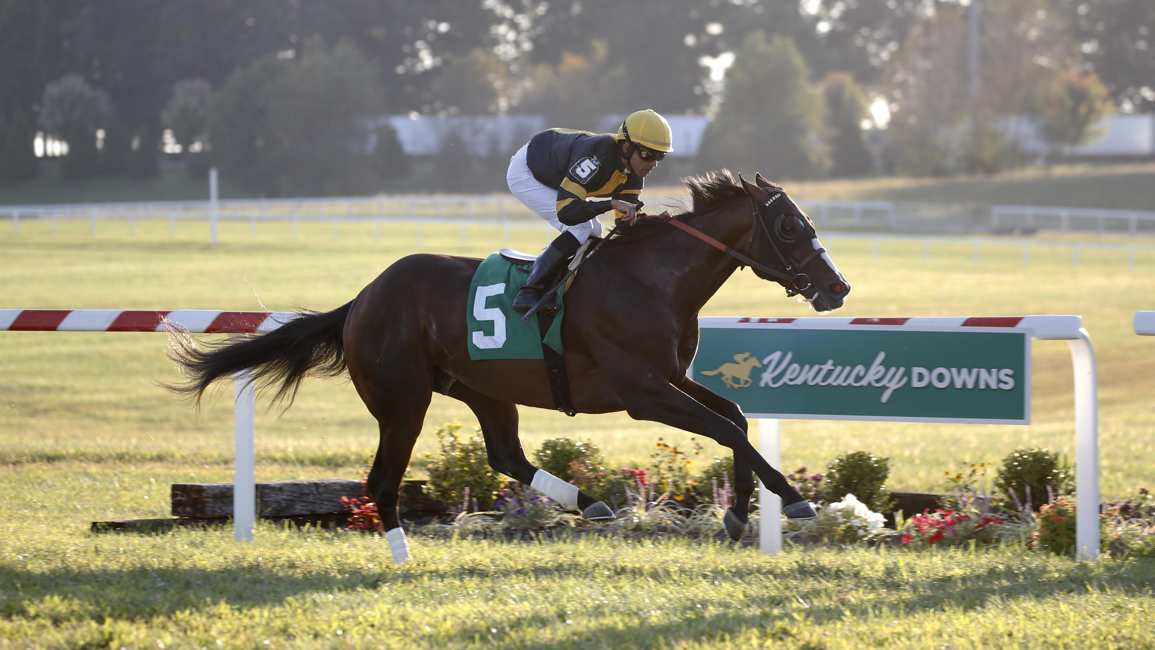 Kentucky Downs Turf Racing S September Place To Be Lady