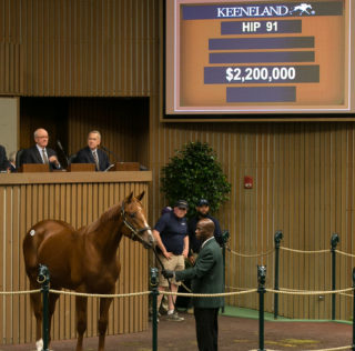 Godolphin Goes to $2.2 Million To Secure Session Topping American Pharoah Colt at Keeneland