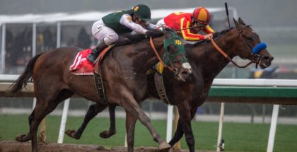 Lady And The Track Beginner S Guide To Horse Racing
