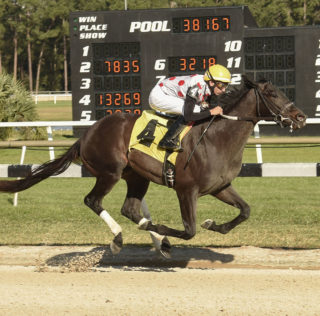 Tampa Bay Derby Draws Eleven Looking For Derby Points