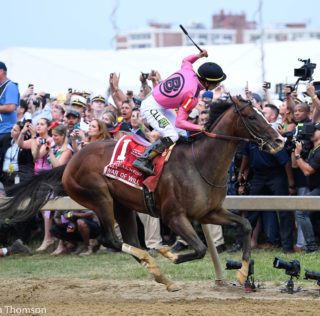War Of Will Brushes Off Derby Kerfuffle, Picks Up Preakness Win