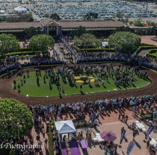 Breeders' Cup Saturday 2019 Has Arrived
