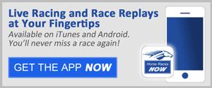 Horse Racing Now